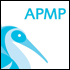 Avoiding project failure with APMP